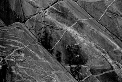 Rubio Canyon 04/02/06